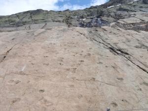 250 millioner år gamle fotspor, fikk vi höre. Juravtrykk!